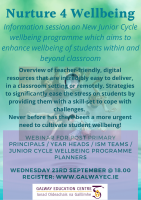 Nurture 4 Wellbeing: New Programme for Junior Cycle